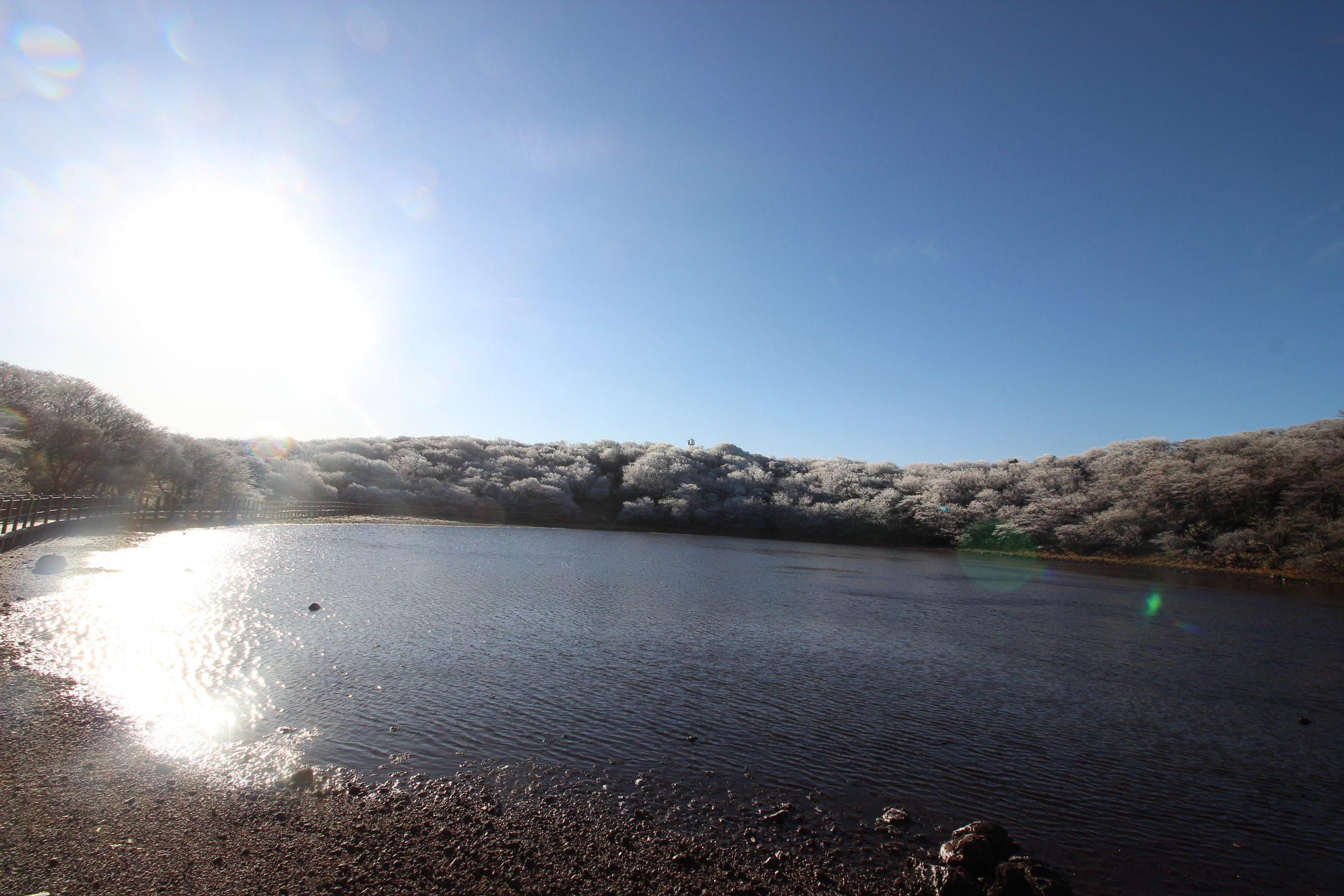 Besneeuwde bomen kratermeer Hallasan